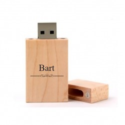 BART cadeau usb stick 8GB
