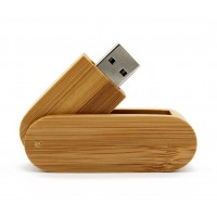 Hout Twister gelakt USB stick 16gb